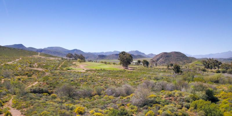 Klein Karoo fauna and flora